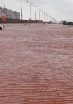 Các tỉnh phía Nam tổ chức tập huấn phòng chống lụt bão
