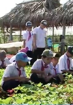 Lớp học đặc biệt của những thầy giáo nông dân