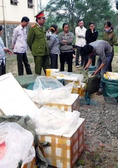 TP.HCM: Phát hiện hàng chục tấn phụ gia thực phẩm hết hạn