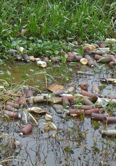 Nguy hiểm từ rác thải thuốc bảo vệ thực vật tại ĐBSCL