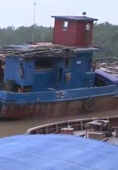Vận tải đường thủy đang phát huy lợi thế