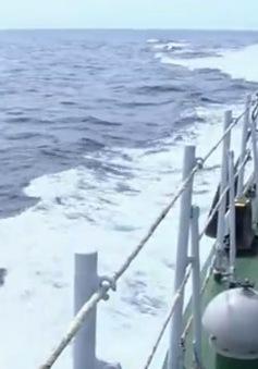 Ngày 22/6, trục vớt vật thể nghi của máy bay CASA ở độ sâu 60m