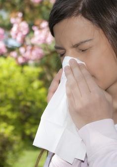 Những lưu ý khi bị viêm mũi dị ứng