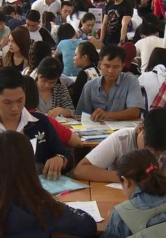 Xét tuyển đợt 1: Hầu hết các trường chưa đủ chỉ tiêu