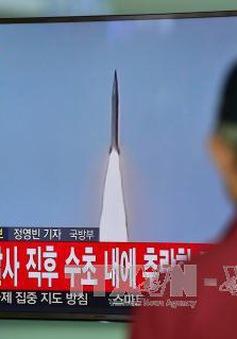 EU mở rộng danh sách trừng phạt Triều Tiên