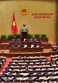 Doanh nghiệp kỳ vọng vào dự thảo Luật Quản lý ngoại thương