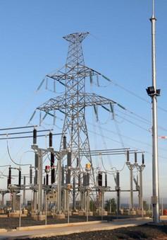 Bình Thuận: Nhà máy điện gió Phú Lạc đi vào hoạt động