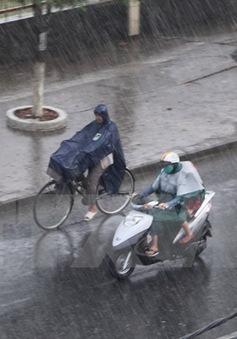 """Các tỉnh Nam Bộ xuất hiện mưa """"vàng"""" giải nhiệt"""