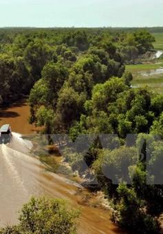 Trải nghiệm Vườn Quốc gia Tràm Chim mùa nước nổi