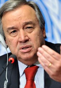 Các ứng cử viên sáng giá cho vị trí Tổng thư ký Liên hợp quốc