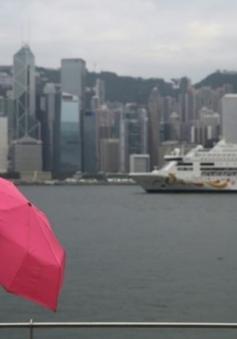 Bão Nida quét qua Hong Kong, hơn 150 chuyến bay bị hủy bỏ