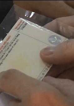 TP.HCM chính thức triển khai cấp giấy phép lái xe quốc tế