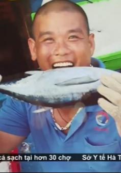 Ngư dân Quảng Bình phấn khởi khi cá được tiêu thụ tốt
