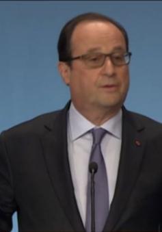 Tổng thống Pháp: Máy bay Ai Cập mất tích đã bị rơi