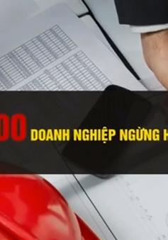 203 doanh nghiệp Việt giải thể, ngừng hoạt động mỗi ngày