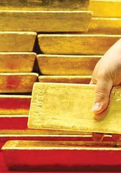 Đồng Bảng và giá vàng trước tác động của Brexit