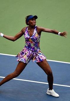 US Open 2016: Venus dễ dàng giành quyền vào vòng 3