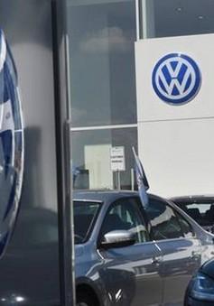 Volkswagen tiếp tục thu hồi xe