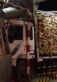 Xe tải mất lái tông sập trạm thu phí tại Biên Hòa