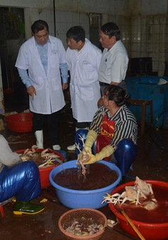 TP.HCM: 58% cơ sở sản xuất vi phạm an toàn thực phẩm