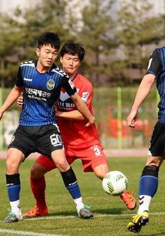 Muốn ra sân thường xuyên, Xuân Trường phải hòa nhập tốt hơn ở Hàn Quốc