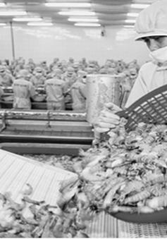 Doanh nghiệp Việt có cơ hội tiến sâu vào thị trường Liên minh kinh tế Á - Âu