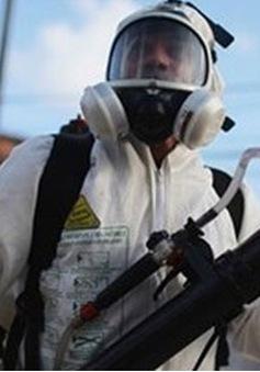 Thái Lan, Đức, Australia xác nhận trường hợp nhiễm virus Zika