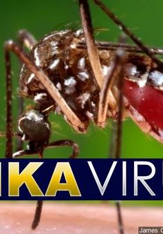 Bộ Y tế: Không nên hoang mang về việc phát hiện bệnh nhân Zika tại Phú Yên