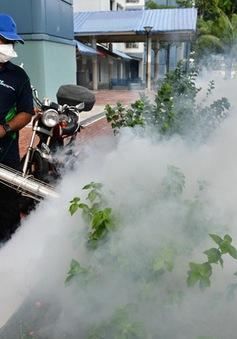 Những sự kiện quốc tế nổi bật tuần qua (29/8 - 4/9): Zika bùng phát tại Singapore
