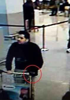 Bỉ công bố diễn biến điều tra loạt vụ khủng bố tại Brussels