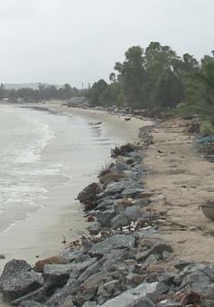 Đà Nẵng: Sạt lở bờ biển nghiêm trọng, uy hiếp hàng chục hộ dân