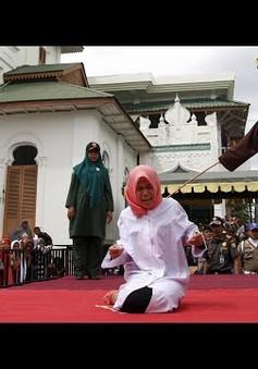1/3 phụ nữ Indonesia bị lạm dụng tình dục và thể xác
