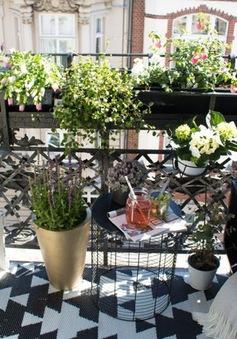 Biến ban công nhỏ tại nhà thành khoảng không gian xanh mùa hè