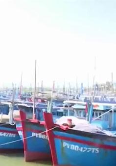 Hàng trăm tàu cá Phú Yên không thể ra khơi vì mắc cạn