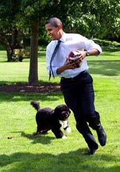 Nhiếp ảnh gia chính cho Tổng thống Obama là ai?