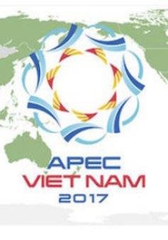 APEC 2017 sẽ được đảm bảo chất lượng dịch vụ viễn thông và an toàn thông tin mạng
