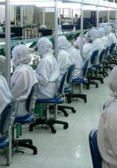 Doanh nghiệp Nhật Bản chần chừ giảm giờ làm thêm