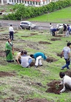 """""""Choáng"""" với màn trồng 66 triệu cây xanh trong nửa ngày ở Ấn Độ"""