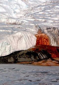 """Giải mã bí ẩn """"Thác máu"""" tại Nam Cực"""