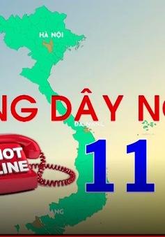Đường dây nóng 111 - Nơi bảo vệ trẻ em bị xâm hại và bạo hành