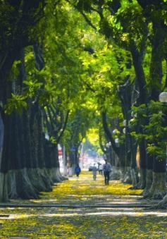 """Những khung cảnh lãng mạn ai cũng nhớ đến khi mùa Thu """"gõ cửa"""" Hà Nội"""