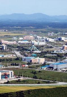 Hàn Quốc muốn nối lại kênh đối thoại với Triều Tiên