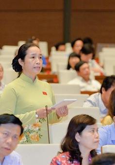 Đại biểu Quốc hội liên tục tranh luận với Bộ trưởng Bộ KH&ĐT