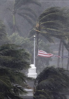 Tổng thống Mỹ phê chuẩn hỗ trợ khẩn cấp cho bang Florida