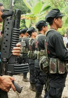 Chính phủ Philippines nối lại đàm phán với phe nổi dậy