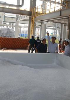 Khắc phục sự cố phát tán bột trắng từ Nhà máy Alumin Nhân Cơ
