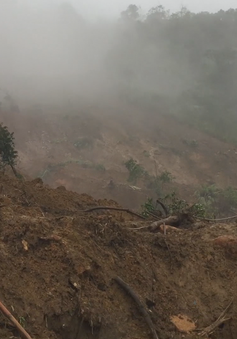 Lời kể của phóng viên VTV8 trở về từ vùng tang thương Trà My, Quảng Nam