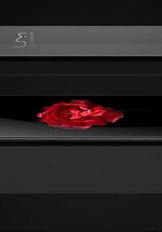 Điện thoại Plus E có tận 6GB Ram, dự báo 10 năm sau vẫn không bị chậm