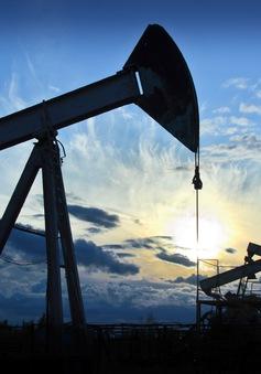 Cổ phiếu ngành dầu mỏ Mỹ dẫn đầu danh sách sụt giảm năm 2017