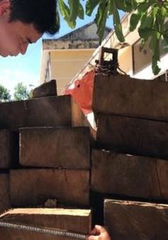 Quảng Ngãi: Bắt ô tô chở gỗ lậu chạy tiền để thoát tội